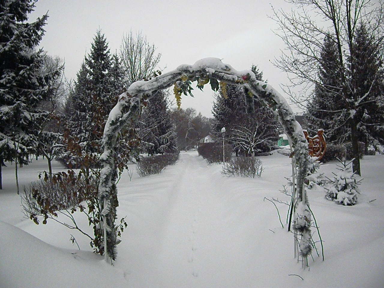 Где отдохнуть в январе?
